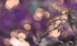紫色和米黄抽象背景 免版税库存图片