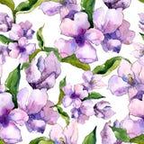 紫色和蓝色德国锥脚形酒杯花 花卉植物的花 无缝的背景模式 免版税图库摄影