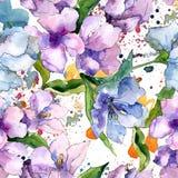 紫色和蓝色德国锥脚形酒杯花 花卉植物的花 无缝的背景模式 库存照片