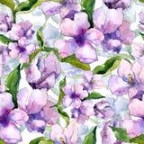 紫色和蓝色德国锥脚形酒杯花 花卉植物的花 无缝的背景模式 免版税库存照片