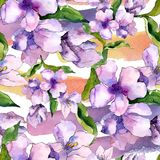紫色和蓝色德国锥脚形酒杯花 花卉植物的花 无缝的背景模式 库存图片