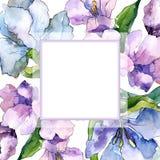 紫色和蓝色德国锥脚形酒杯花 花卉植物的花 框架边界装饰品正方形 免版税图库摄影