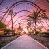 紫色日落看法在棕榈庭院画廊的 库存照片