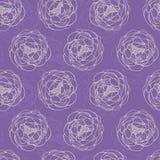 紫色牡丹 免版税库存照片