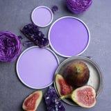 紫色的水晶和无花果与一个圆的框架与一个地方设计师`的s 免版税库存图片