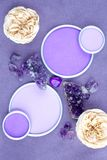 紫色的水晶和玫瑰与一个圆的框架与一个地方为 免版税库存照片