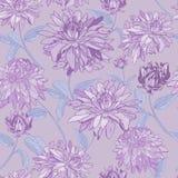 紫色的翠菊 无缝抽象的模式 印刷品,墙纸 向量例证
