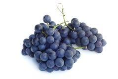 紫色的葡萄 免版税库存照片