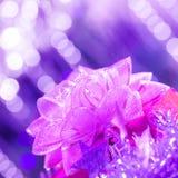 紫色礼品弓 免版税库存照片