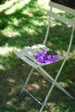 紫色福禄考在庭院里开花坐一把绿色小餐馆椅子 免版税图库摄影