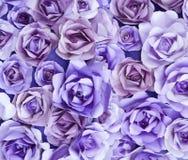 紫色罗斯纸艺术纹理Artbackground 图库摄影