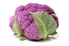 紫色花椰菜 库存图片