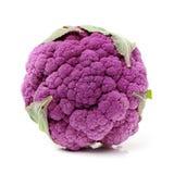 紫色花椰菜 免版税库存图片