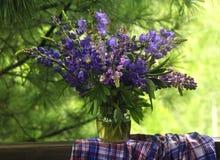 紫色花花束在一个绿色庭院里 免版税库存图片