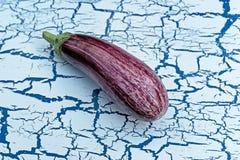 紫色茄子 免版税库存图片