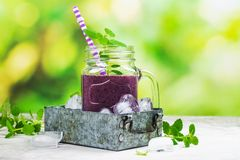 紫色莓果圆滑的人,未加工的食物的饮食 免版税库存图片