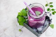 紫色莓果圆滑的人,未加工的食物的饮食 免版税图库摄影