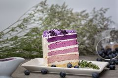 紫色蛋糕用柠檬Buttercream被切开成微型各自的蛋糕,装饰了用新鲜的黑莓,美丽的和鲜美 库存图片