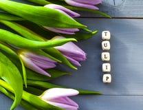 紫色郁金香开花题字宏观绿色春天母亲节自然装饰花束明亮的木头 免版税库存图片