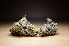 紫色金杂草发芽在木书桌上的宏指令 免版税图库摄影