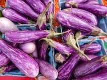 紫色镶边街道画茄子菜在市场上 免版税库存照片