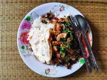 紫花罗勒用猪肉,荷包蛋 图库摄影