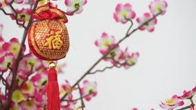 繁体中文在开花树的新年装饰 股票视频