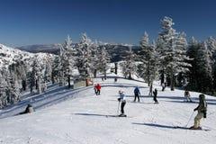 繁忙的手段滑雪 免版税图库摄影
