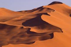 繁忙的沙丘 库存图片