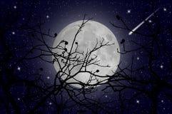 繁星之夜和彗星 库存图片