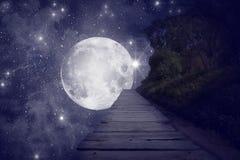 繁星之夜 库存图片