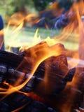 纠缠在木头附近的火焰 库存图片