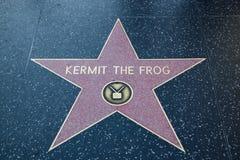 纠错文件传输协议青蛙好莱坞明星 库存图片