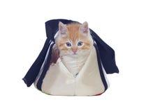 红发猫被卷起入它运载的袋子 免版税库存图片
