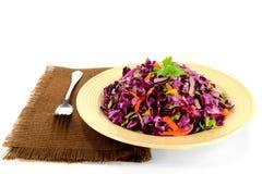 红叶卷心菜沙拉晒干了用红萝卜和芹菜 免版税图库摄影