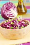 红叶卷心菜沙拉用绿豆和黄瓜 免版税图库摄影