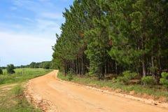 红土在一个农场的土路在乔治亚,美国 免版税库存照片
