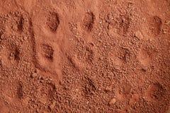 红土带土壤场面 库存图片