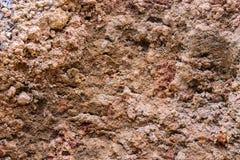 红土带土壤 免版税库存图片