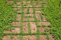 红土带石走道在庭院里 图库摄影