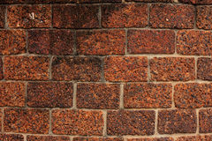 红土带砖墙纹理 库存图片