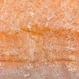 红土的土壤横断面 库存图片