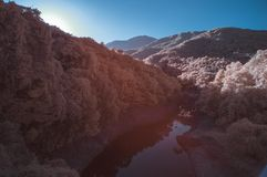 红外颜色的超现实的湖 库存图片