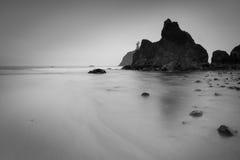 红宝石海滩在有雾的奥林匹克国家公园 免版税库存照片
