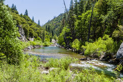 红木小河,高速公路180,国王峡谷国家公园, Californ 免版税库存图片