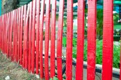 红木篱芭 库存图片