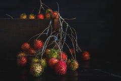 红毛丹 免版税图库摄影