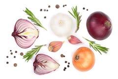红洋葱、在白色背景隔绝的大蒜用迷迭香和干胡椒 顶视图 平的位置 免版税库存照片