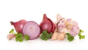红洋葱和大蒜 免版税库存照片