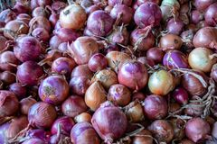 红洋葱在一souk的待售在阿加迪尔,摩洛哥 库存照片